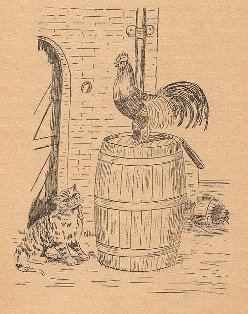 Taken from the book De zwerftochten van Peter de Kater