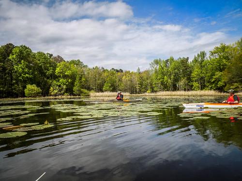 Lake Marion Plantation Islands-62