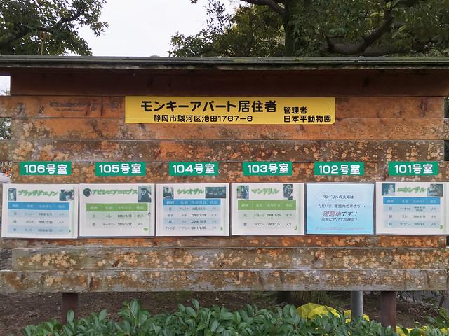150320家族で日本平動物園 324 1