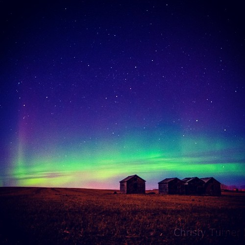 Beautiful prairie Aurora #alberta #Aurora #aurorachasers #auroraborealis #borealis #beautiful #captureyyc #ctown #canada #calgary #christyturnerphotography #d300 #hometown #lights #northernlights #nightphotography #yycaurorachasers #yyc #yycphotographers