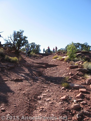 Another picture of the road to Canyonlands Overlook, Canyon Rims Recreation Area, Utah