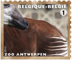 11 Zoo Timbre 9 Okapi