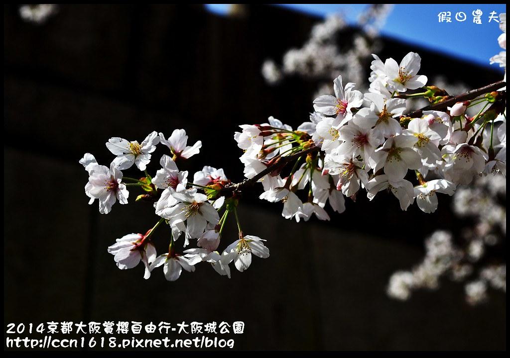 2014京都大阪賞櫻自由行-大阪城公園DSC_1759