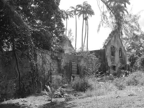 "P3270003-Last Remains of West St Joseph SM School, aka ""House Hill"" now Grantley Adams Secondary School"