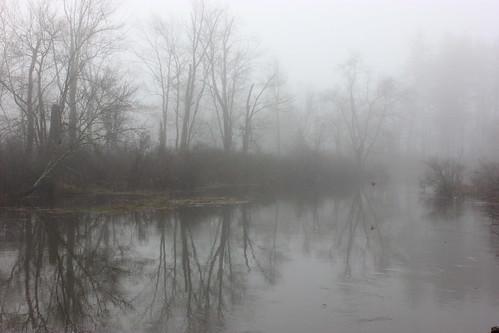 River of Fog
