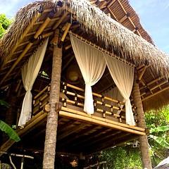 Pondokan #bambu yang asri, menyatu dengan lingkungan sekitarnya...