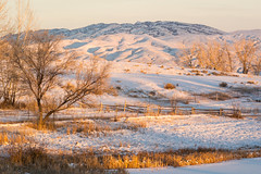 Greybull, Wyoming, USA.