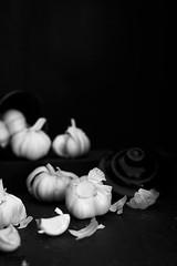 monochrome garlic