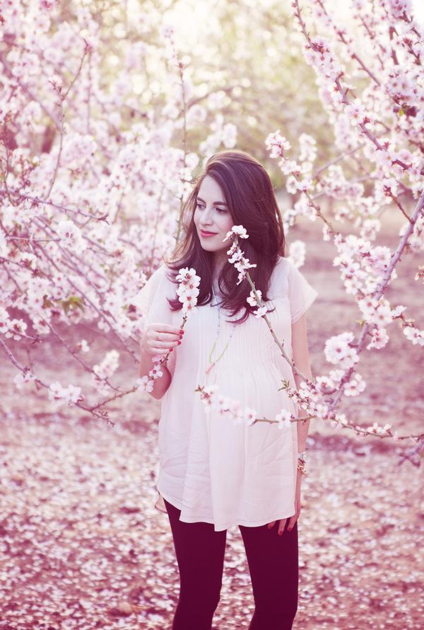 almond_blossom9