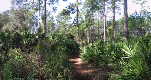 pano 2015 mar 7 old-spanishtrail-to-roundpond