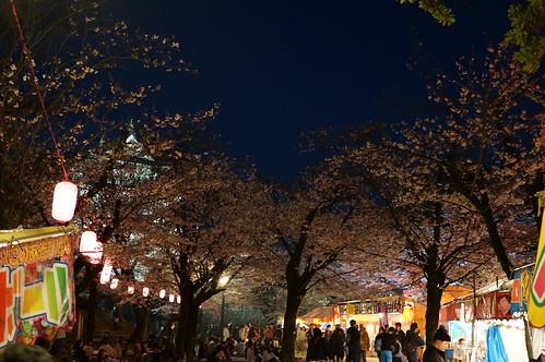 Chiba sakura festival 02