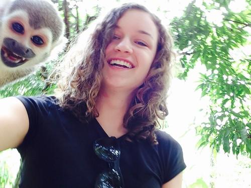 Best monkey selfie ever