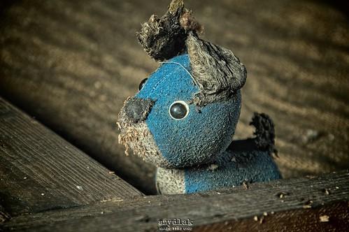 I'm blue da ba dee da ba, die...