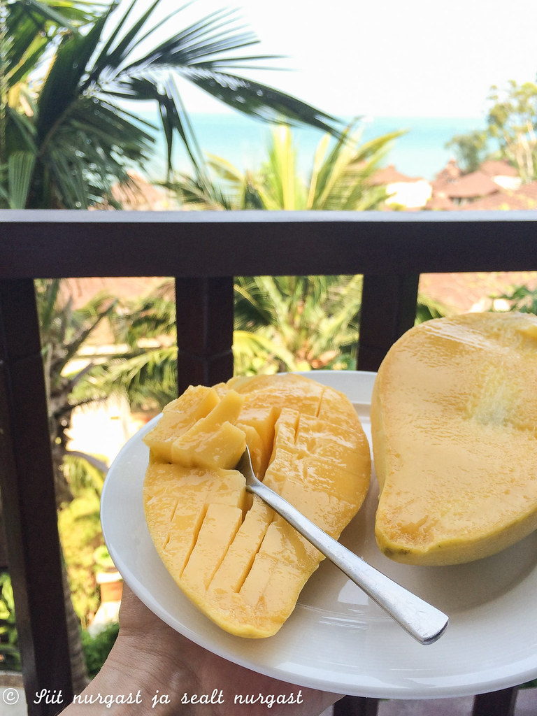 mango season in thailand