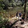 Hiking Deep Creek Trail #smokymountains #deepcreektrail