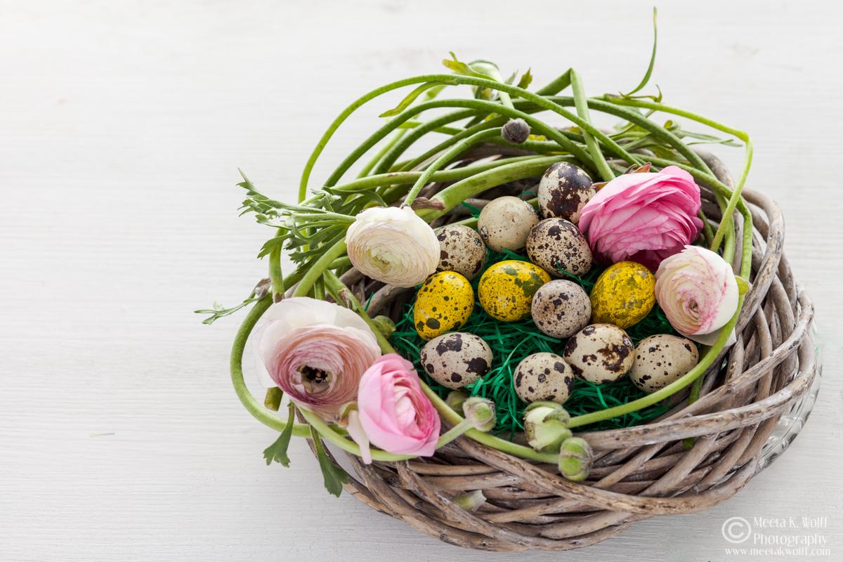 Easter2015-0019
