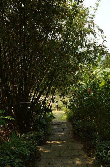 內雙溪自然中心29