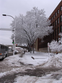 MN Winter Storm (U of MN campus)
