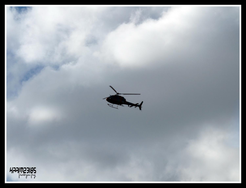 صور مروحيات القوات الجوية الجزائرية Ecureuil/Fennec ] AS-355N2 / AS-555N ] - صفحة 5 27295734062_e2b6ed7396_o