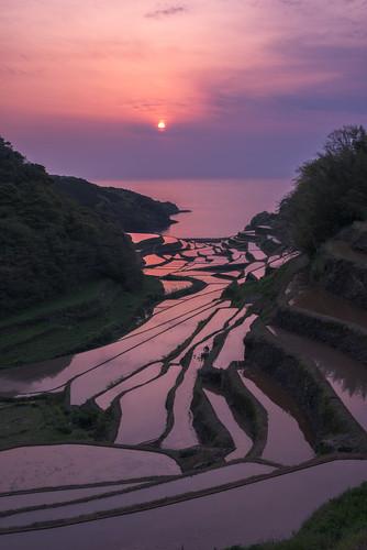 sunset japan riceterraces kyushu sagaken higashimatsuuragun