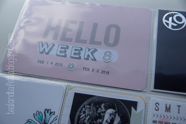 Project Life - Week 8