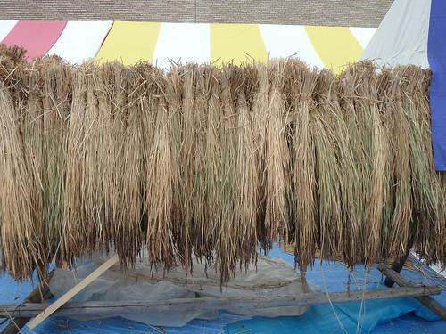 ふるさと体験ひろば お米の脱穀体験