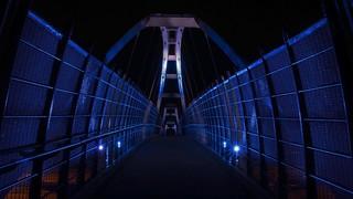Alien Bridge