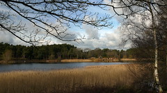 Frensham Pond and Kettlebury Hill