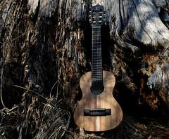 "Guitalele (Model ""GS"" by APC Instruments) [photo 2]"