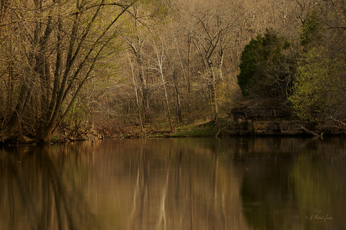 trees nature water forest reflections river landscape spring scenery missouri ozarks springtime