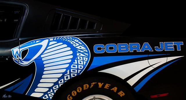 matt black cobra jet.. EXPLORE 6-24-16