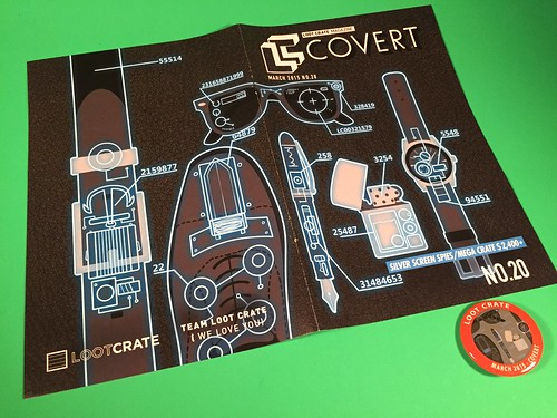 March 2015 Loot Crate Book & Pin