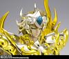 Aiolia - [Imagens] Aiolia de Leão Soul of Gold 16685876989_e46e30d77f_t