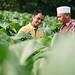 Farmer partnerships