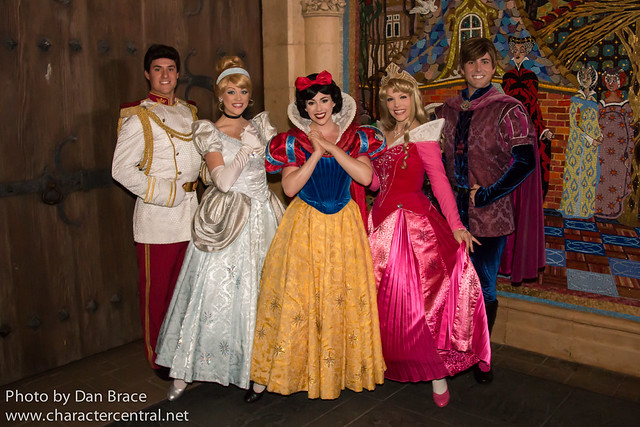 Meeting the Dream Along with Mickey characters