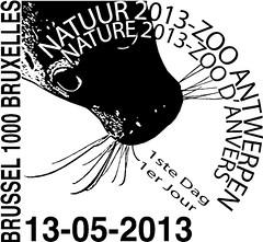 11-ZOO d'Anvers eerste dag