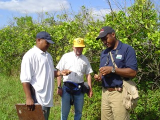 Russell Duncan evaluates citrus during an outbreak of citrus canker in the Bahamas