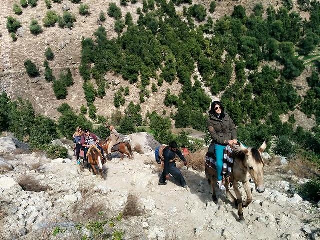 Fresh group of volunteers on horses moving towards Haji public school