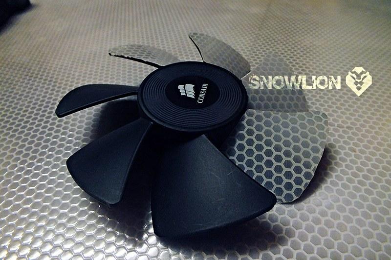 Snowlion1