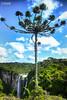 Cachoeira Itaimbezinho em Santa Catarina-SC-Brazil
