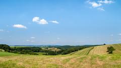 Landschap omgeving Dahl - Diekirch - Luxemburg