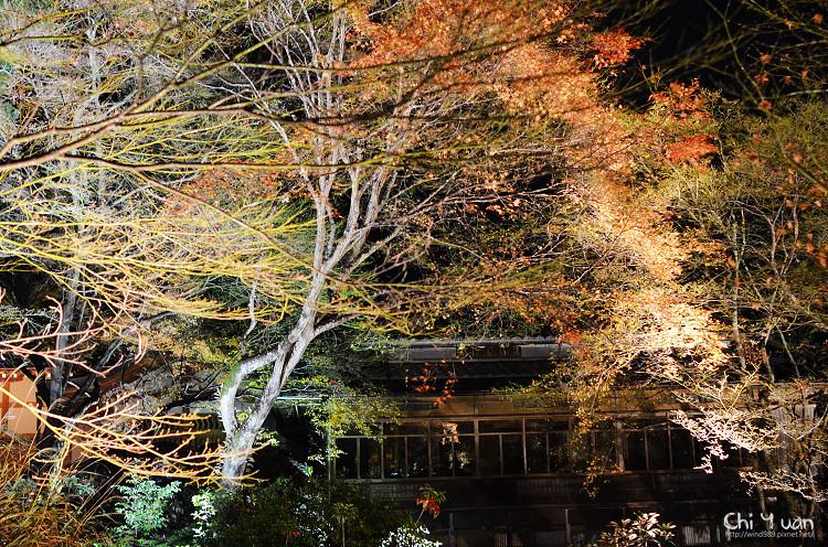 嵐山寶嚴17.jpg