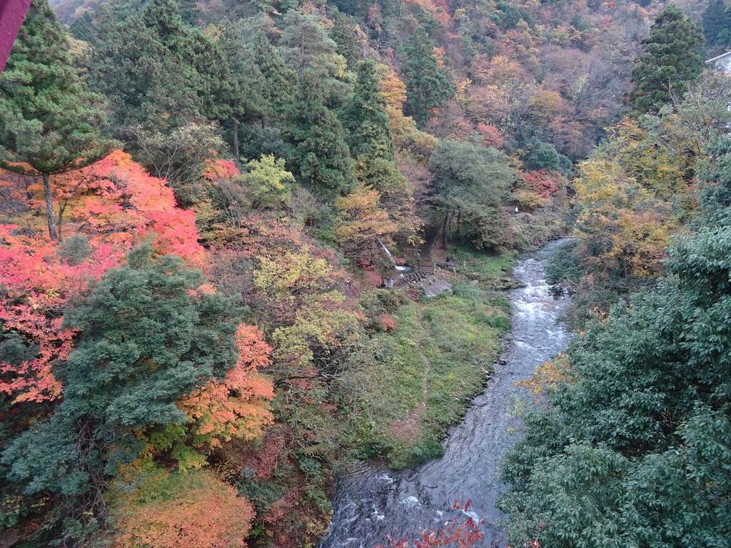 鶴仙渓散策
