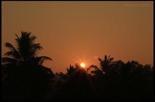 A Warm Tropical Sunrise