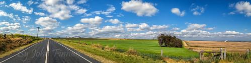 barley australia qld kilarney wintercrop johnfinnan johnfinnanphotography