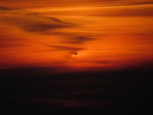 sunset sun streets rain sunrise mond heaven himmel wolken neighbours sonne nachbarn märz homesweethome regen spaziergänge streetlive