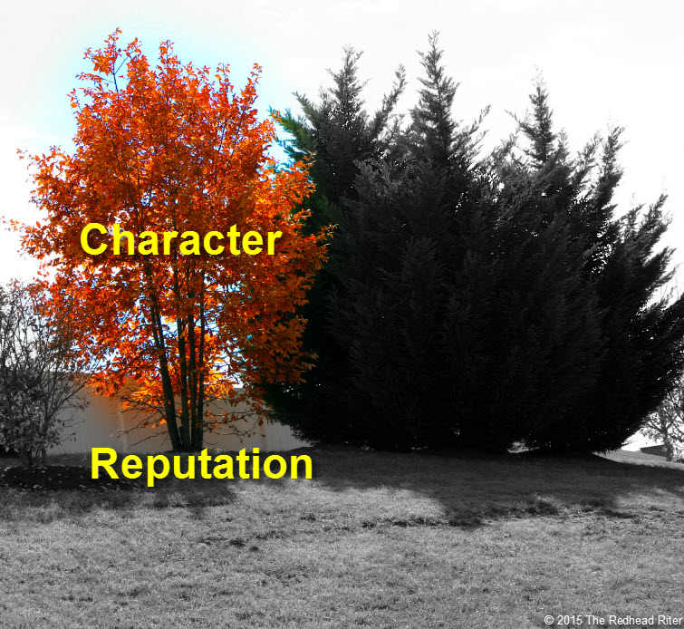 orange yellow tree with shadow character reputation