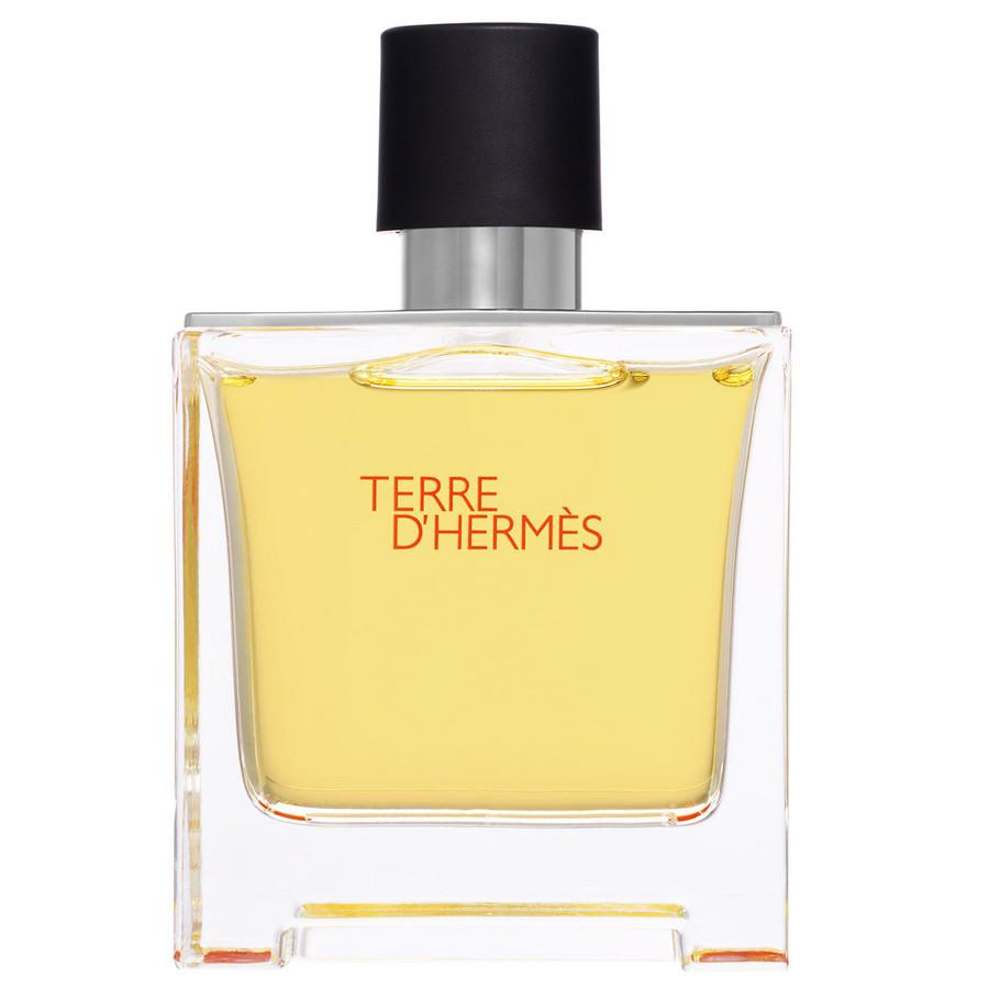 HERMES-Terre_d_Hermes