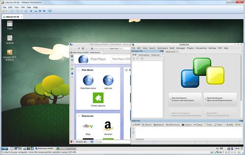 Lubuntu 執行 PaleMoon 與 CodeLite