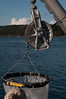 Zooplankton Net with depth recorder
